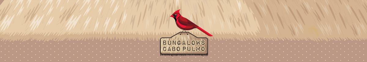 Bungalows Cabo Pulmo. Alojamiento y Servicios de Hotel
